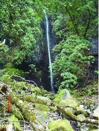 Ruta por las Aguas de Tirajana