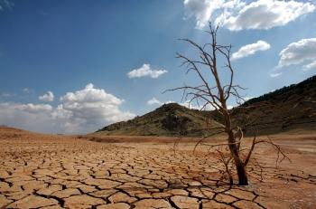 La escasez de agua depurada amenaza a la agricultura en Gran Canaria