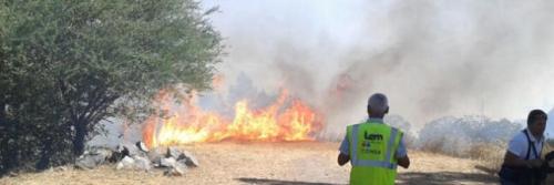 Un incendio en la cumbre de Gran Canaria se mantiene descontrolado con seis frentes activos