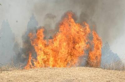 El incendio de la cumbre grancanaria pasa a nivel 2 y el Gobierno regional asume las labores de extinción