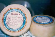 Una cadena de supermercados de Tenerife quiere comprar Coaldea (La Aldea de San Nicolás)