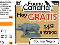 El cochino negro, repartido el miércoles por el periódico antigrancanario <i>El Día</i>
