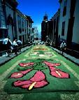 Gamberros destrozan las alfombras de la procesión del Corpus de Vegueta