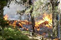 La cumbre de Gran Canaria sigue siendo pasto del fuego
