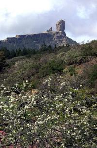 Gran Canaria, declarada Reserva Mundial de la Biosfera por la UNESCO